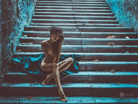 steps by DanHecho