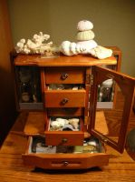 Cabinet of curiosities no. 5 by modastrid