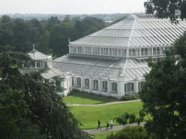 Kew Gardens Temperate House by jemmans