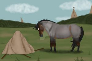 Teepee Raising: Assistance Required by CasablancaStudios