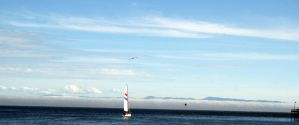 Santa Cruz view of the Pacific by dhunley