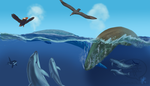 Whale Watching by comixqueen