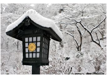 Snowy Lantern by billsabub