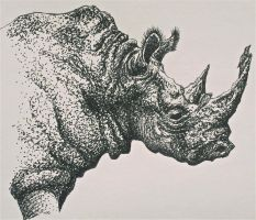 Rhino - Ink by Trista-Willows