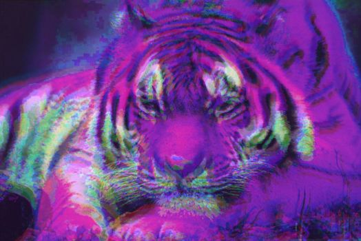 Amur Tiger Remix by TJSS08