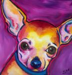 Fawn Chihuahua, Stolicakes by StudioSRV