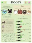 Root Species Info by RootFae