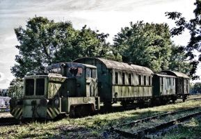 Abandoned train by UdoChristmann