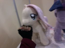 Punching ponies: Fluttershy by DarkPrince2007