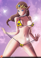 Princess of Hyrule (NSFW Optional) by zelc-face