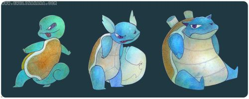 squirtle and frenz. by cockrocket