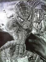 'Spider-Man - 2014 - (Drawing) by Stevegillettart