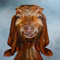 Year of the Goat/Sheep, 2015 by j0rosa