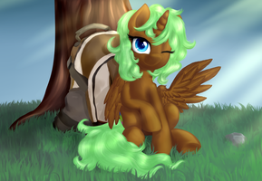 Camp by Equie
