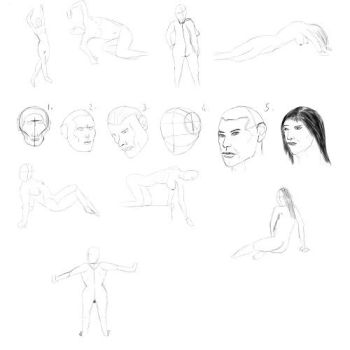 Studies Loomis heads and 180 second poses by Shanelee90