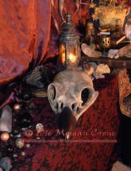 Giant Corvid Skull by MorganCrone
