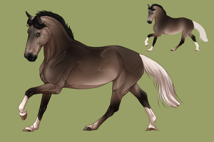 Horse design   Commission by Pashiino
