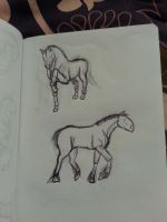 Sketch#2 Horses by Aiclo