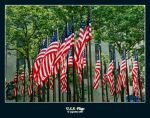 U.S.A. Flags by SuperSimo