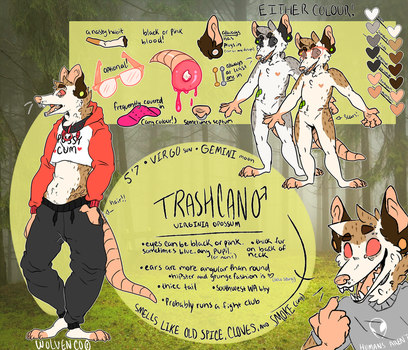 trashcan reference 2018 by wolvenco