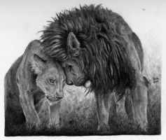 Lions in love by GrayWolfcg