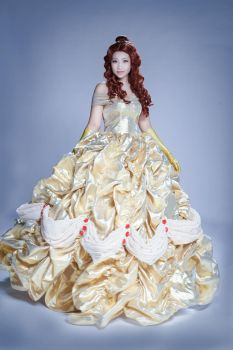 Beauty and the Beast - Dress by MonicaWos