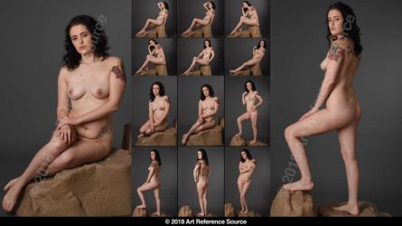 Stock: Elisha 12 Elegant Nudes by ArtReferenceSource