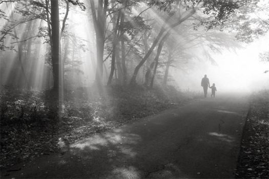 walk in the light by Floriandra