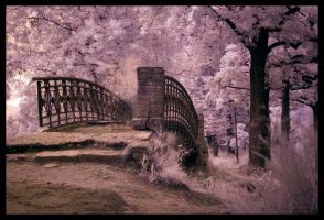 The Bridge Detail by SilverJ