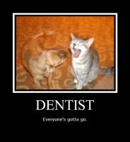 Dentist-silly animals by Crazy-Lsh