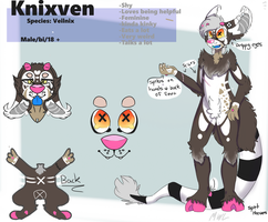 Knix Reference (2016) by MissWaffleLover