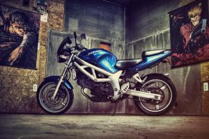 1999 Suzuki SV650 by 5bodyblade