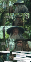 The Hobbit - Trolls... by yourparodies
