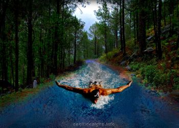 Swimming in the Jungle way... by designsmart