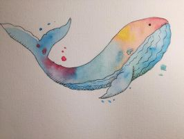 Colorful Whale by Luftdose