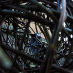 Parrot through weave by entanglement