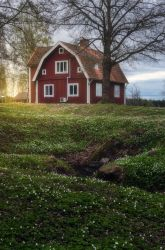 Scandinavian Spring by PaVet-Photography