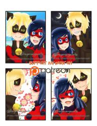 Miraculous - Ladybug and Chatnoir Photos by Freya-Mangaworks