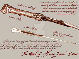The Wand of Harry Potter - Diagram by gondring