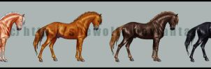 Preview - horse color chart by SheWolff