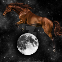 And-the-Horse-Jumped-Over-the-Moon by Charmed-Studios