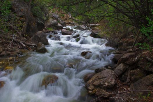 Timeless Creek with No Name by sdoorex