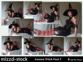 Autumn Witch Pack 5 by mizzd-stock