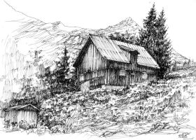 Wooden, Norwegian House by gaciu000