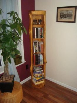 cedar log bookcase by chesterhubbard