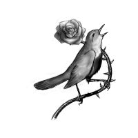 The Nightingale and the Rose by Bassless
