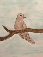 Mourning dove by blurryfeather