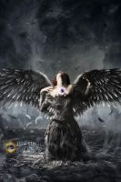The Collapsed Angel by sameelmk