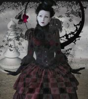 Queen of Hearts by Poetrymann