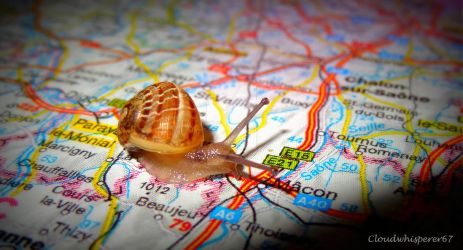 The Hitchhiking Snail... on the Road Again by Cloudwhisperer67